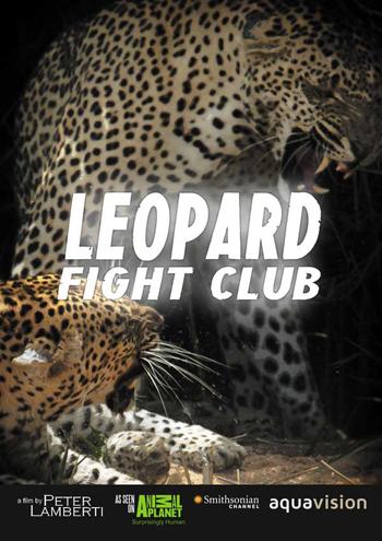 Leopard Fight Club.